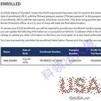 EVUS登记状态查询教程